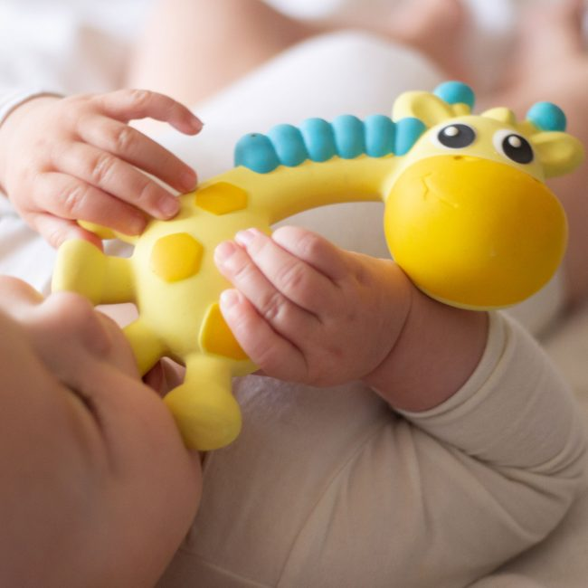 0186970-Squeak-and-Soothe-Natural-Teether